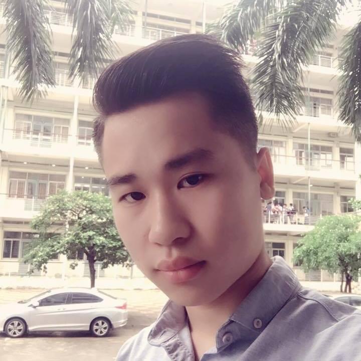 Anh Phan Vu, Vietnam